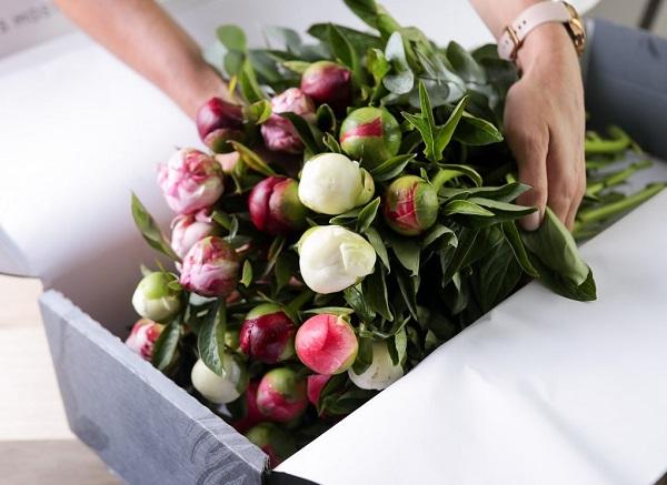 clementi flower shop